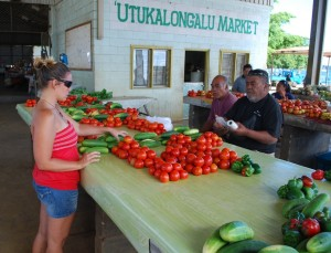Getting tomatoes for homemade salsa